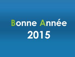bonne-anne-2015.png